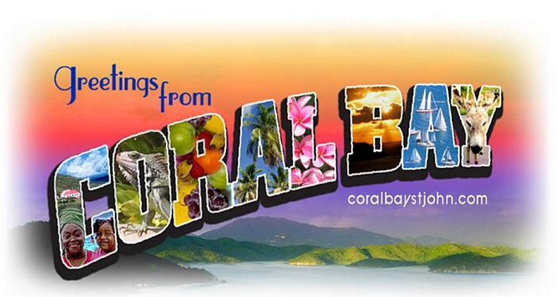 Recommended Links for Coral Bay St John Accommodations