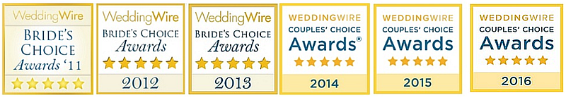 Past Wedding Wire Awards